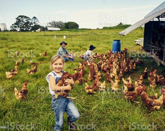 Joke - Stock photography